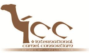 international camel consortium