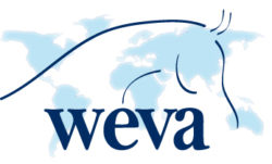 World Equine Veterinary Association